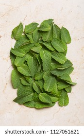 Mint leaves flat lay. Green aromatic herb still life