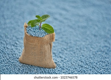 Mint leaves in gunny sack on blur (NPK) fertilizer  background.