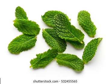 Mint leaves isolated on white background, top view