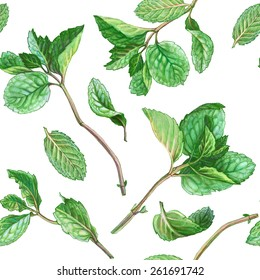 Mint Leaves Seamless Pattern Pencil Drawing