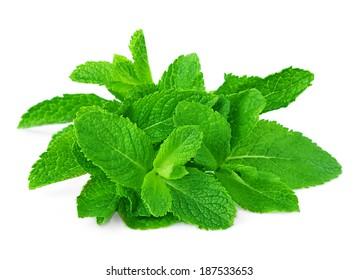 mint sheaf