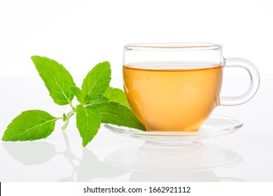 Mint tea. Cup of tea with fresh mint leaves on a white background.