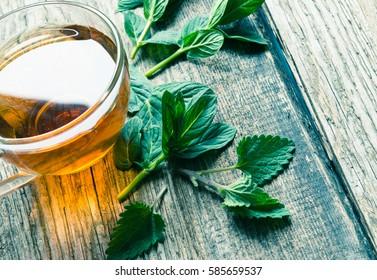 Mint tea/toned photo