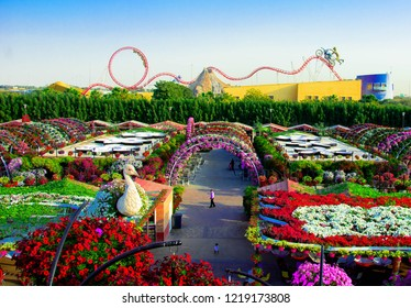 Miracle Garden in Winter, Dubai - January 2017