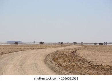 A mirage in the distance on a road winding through the Namib desert