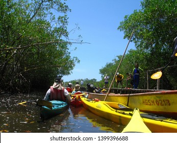 Miranda/Venezuela - April 23, 2018: Kayaking team ready to explore a mangrove forest and barrier or reef in Tacarigua swamp lagoon protected area with the status of national park.