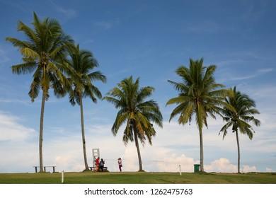 "Miri, Sarawak, Malaysia - December 5 2018: a family at the Palm Tree Beach of ""Coco Cabana Miri"""