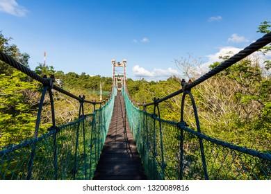 Miri, Sarawak, Malaysia - December 6 2018: Canopy walk over the swing bridge at Public Park Miri (malay: Taman Awam Miri)
