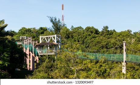 Miri, Sarawak, Malaysia - December 6 2018: Canopy walkway at Public Park Miri (malay: Taman Awam Miri). The communication tower in the background