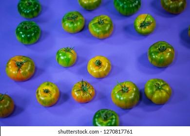 mirinda tomatoes on lila background