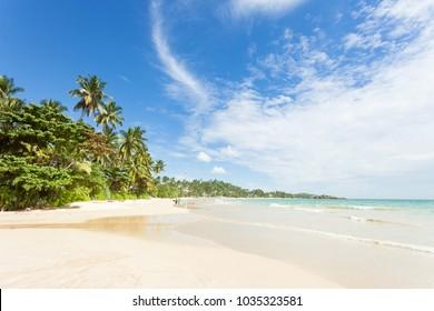 Mirissa Beach, Sri Lanka, Asia - A view across the wonderful beach of Mirissa