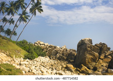 Mirissa. Sri Lanka