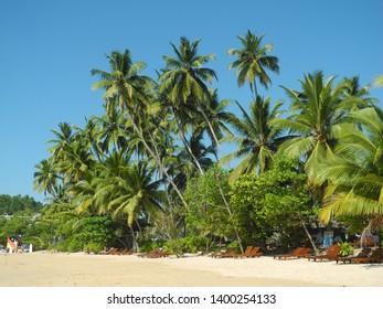 Mirissa, Sri Lanka - November 25, 2018: Mirissa beach