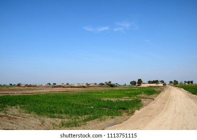 Mirpurkhas, Pakistan - January 19, 2017: A small village consisting mainly of farm workers in rural Sindh. The village is made up mainly of thatched or mud houses surrounded by fertile farm lands.
