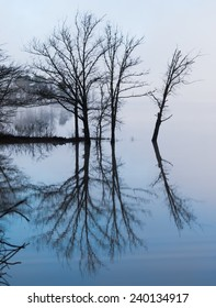 Mirror lake fog landscape