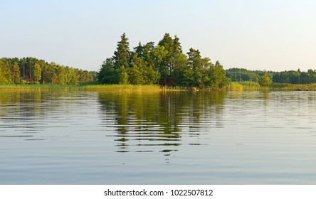 Mirror reflection of forest in still water. Aland Islands, Finland. Evening