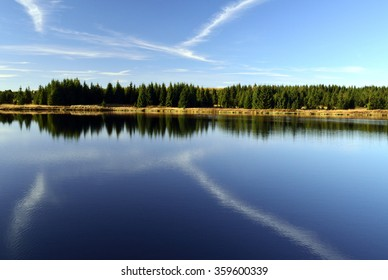 Mirroring trees and sky on surface of pond in the Ore Mountains. - Shutterstock ID 359600339