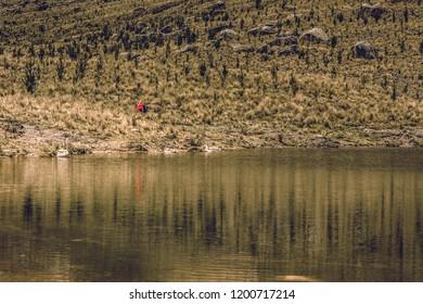 MIRROW WORLD IN THE LAKE