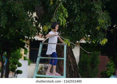 Misbehave teenage girl hold bran tree