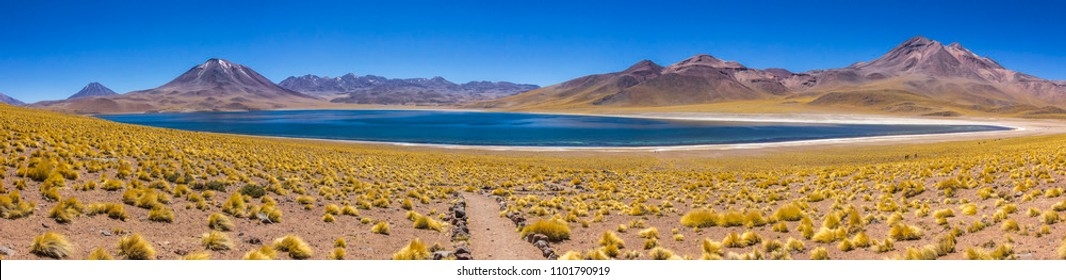 Miscanti Lagoon inside Desierto de Atacama (Atacama Desert) at Chilean altiplano in the middle of the Andes. With the Miñique Lagoon are the famous Lagunas Altiplanicas an amazing travel destination