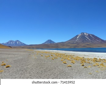 Miscanti lagoon and volcanos on Chilean Altiplano