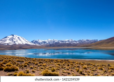 Miscanti Lake (Laguna Miscanti), Chile, brackish water lake located in the altiplano of the Antofagasta Region and snow covered Andes mountains, Miniques volcano and Cerro Miscanti tower