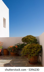 Miscellaneous flower pots standing on a porch. White stucco wall highlighting blue skies is on a background.