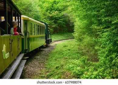 MISKOLC - APRIL 17: Sightseeing Train in Miskolc, Hungary going through green spring forest