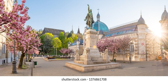 MISKOLC, HUNGARY - APRIL 19, 2019: Japanese cherry trees blooming with pink flowers on Elisabeth Square with the statue of Lajos Kossuth and the Avas Church and its bell tower in the background.