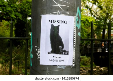 Missing Cat Poster At Amsterdam The Netherlands 2019