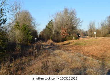 Mississippi and Skuna Valley Railroad right of way in Yalobusha County