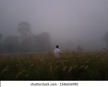 Mist before the sunrise