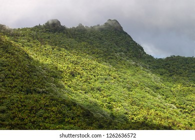 Mist covers the rainforest peaks of El Yunque National Forest in Puerto Rico