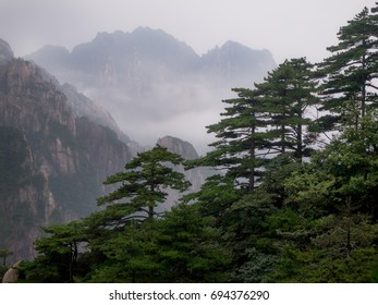 Mist enshrouded mountains and pines in Huangshan, China