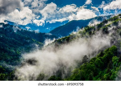 Mist in Great smoky Mountains National Park