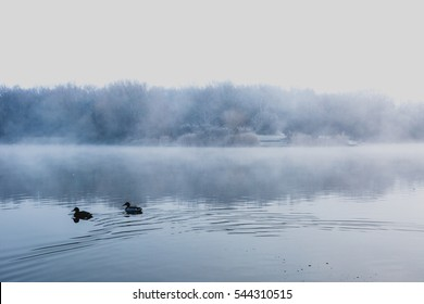 Mist hovering over a cold lake and trees in Goldsworth Park, Surrey, Woking, England