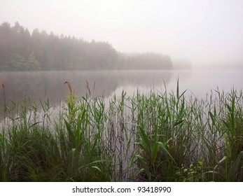 Mist and the lake. Europe. Lithuania.