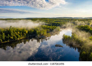 Mist over a lake and forest in morning light