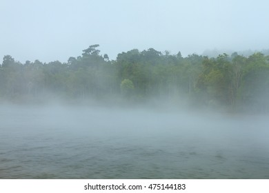 Mist at the reservoir in Khao Yai national park (a unesco world heritage site), Thailand.