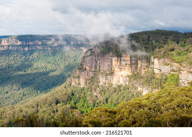 Mist rising from Eucalyptus forest in early sun; Blue Mountains, Australia