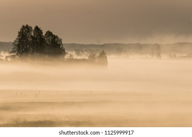 Mist rising from the river in the morning