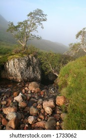 Mist and stream in Sctlands Highlands,