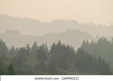 Mist in Toledo,on the Yaquina River and wooded inland from the Central Oregon Coast in the Pacific Northwest USA