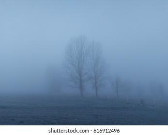 Mist in village