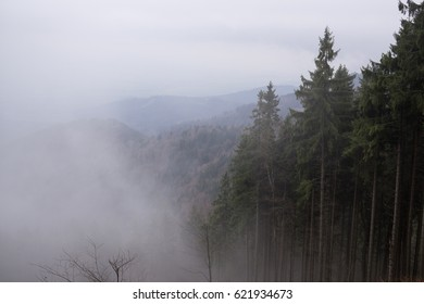 Mist in the woods and mountains during spring. Slovakia