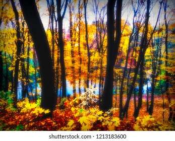 Mistic glow in autumn forest, pair walking, water at background