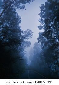 Mistical blue mist