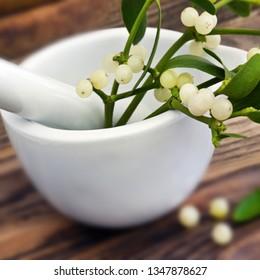 Mistletoe medical therapy