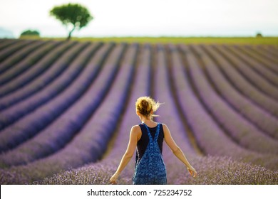 the mistress of the farm is pleased with the ripe lavender field, standing in the middle of the rows of lavender at sunset