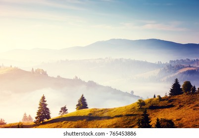 Misty alpine valley in sunlight. Location Carpathian national park, Ukraine, Europe. Picture of a rustic area. Scenic image of farming concept. Explore the environment. Discover the beauty of earth.